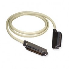 Amphenol Cable 10' Male to Male